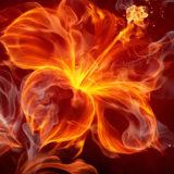 fire-wallpaper-1366x768